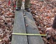 plank idea