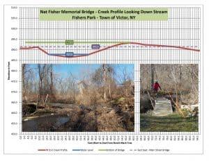Profile of Creek