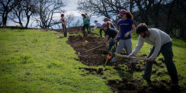 Get Involved like this group of college students building a new trail during their spring break.