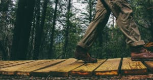hiker walks across a wood board walk in the forest