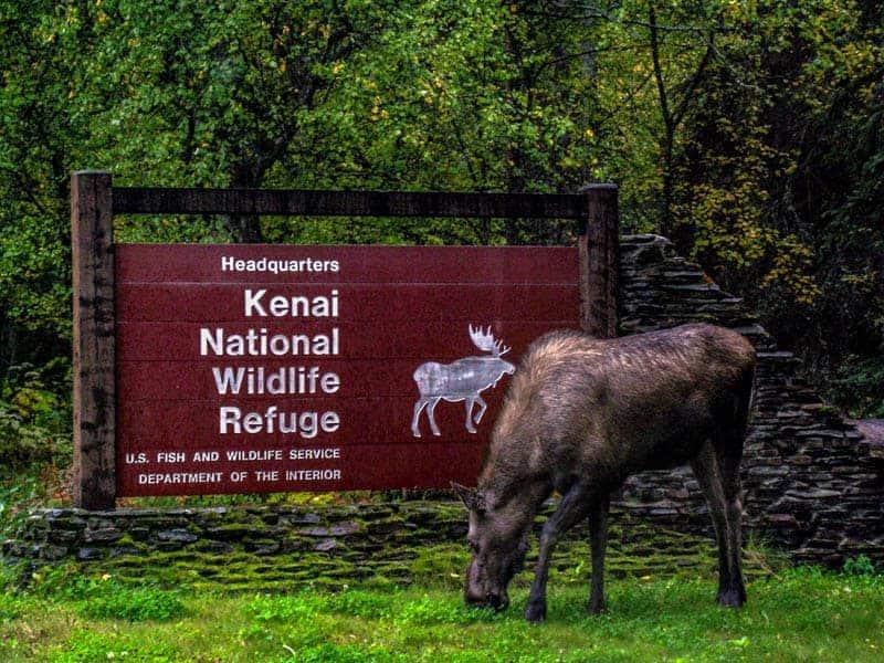 Kenai National Wildlife Refuge American Hiking Society