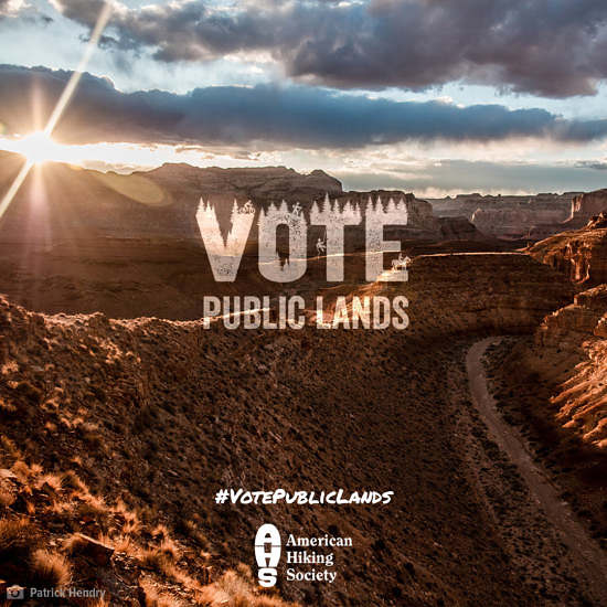 Vote Public Lands wordmark on setting sun in a desert canyon