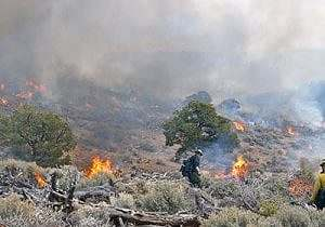 wildland-fire-hiking-issue-550x400